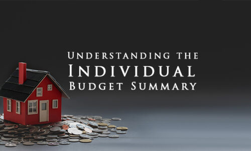 Understanding the Individual Budget Summary